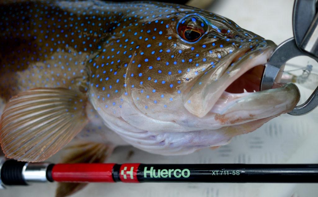 Huerco XT711-5S Gallery 03