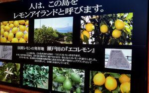 生口島は別名「レモン島」