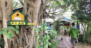 カフェ 森の巣箱