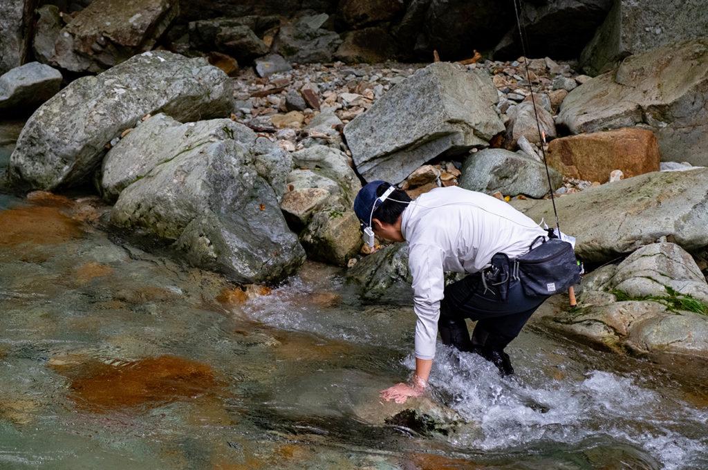 真夏だけどここの水はかなり冷たい。