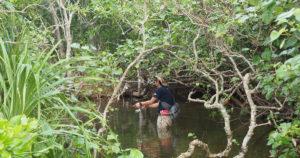 小場所の多い小規模河川は探りやすい