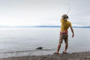 琵琶湖、夏の風物詩。「ハス」を釣ろう。