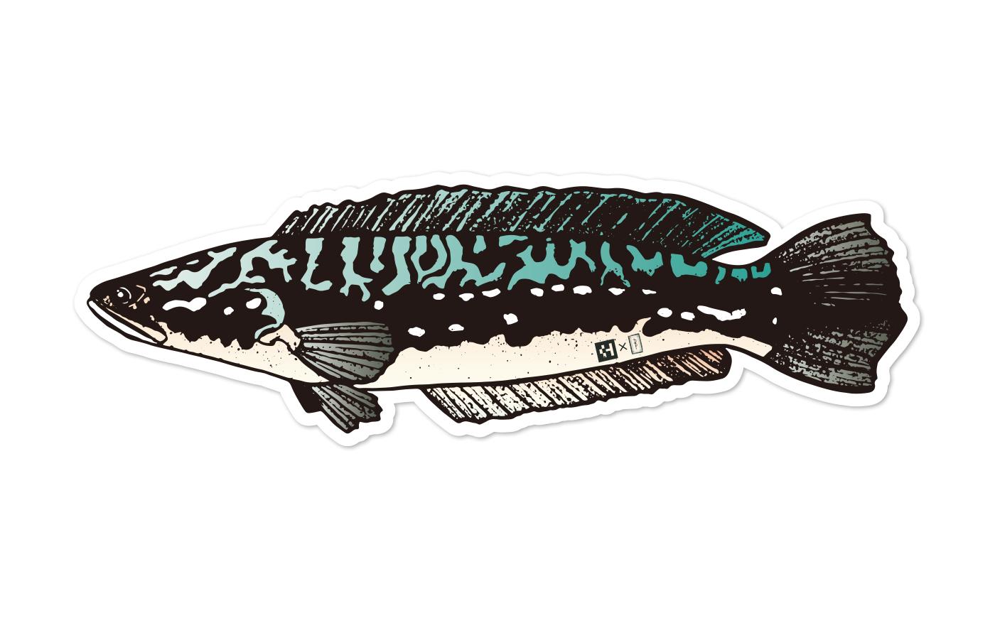 Fish Sticker ジャイアントスネークヘッド